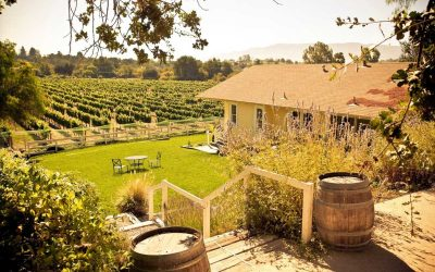 Best Solvang Wineries